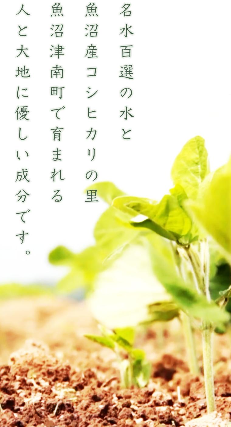 https://soil-cwm.jp/wp-content/uploads/2020/02/cwm_s2_nsize5-1.png