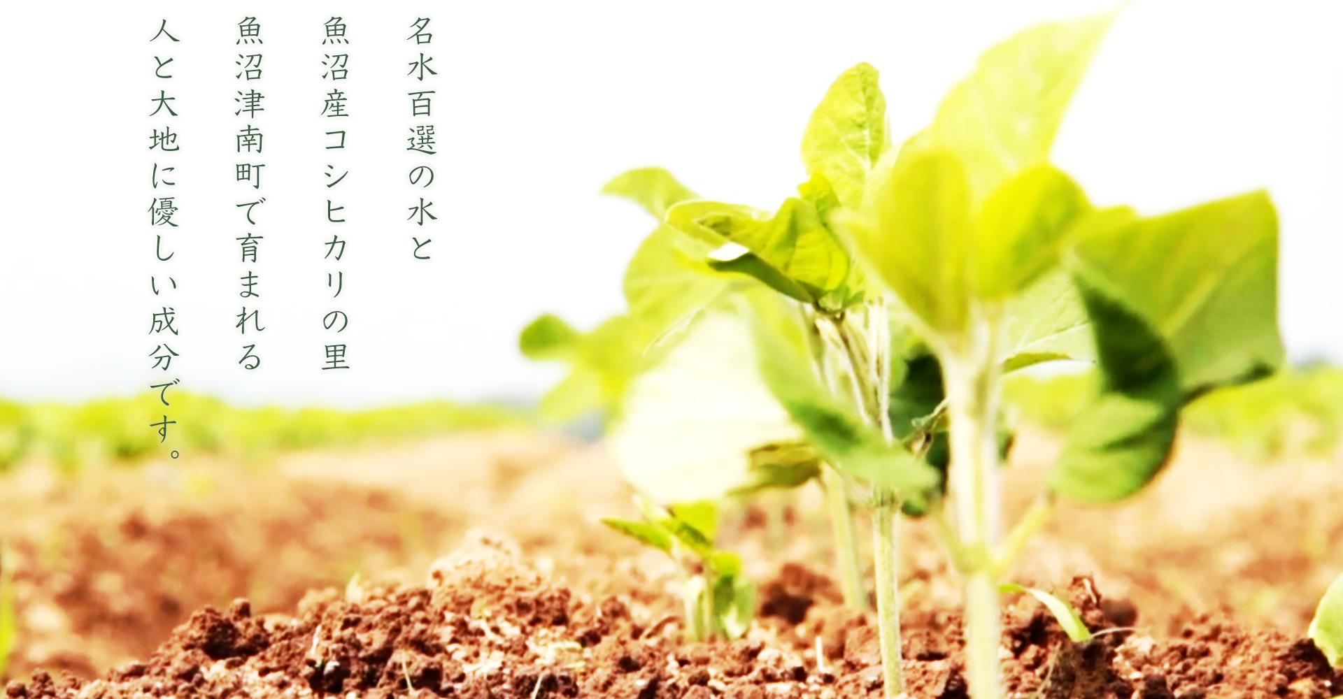 https://soil-cwm.jp/wp-content/uploads/2020/02/cwmtop3-2.png